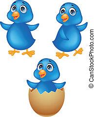 csecsemő blue, madár, karikatúra