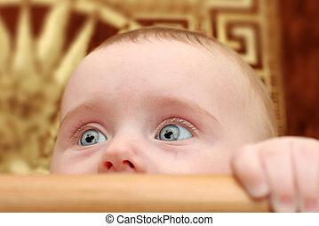 csecsemő, closeup, meglepődött