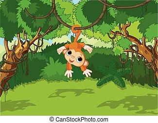 csecsemő, fa, majom
