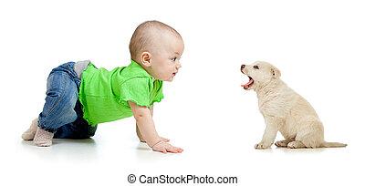 csecsemő lány, kutyus, kutya, játék