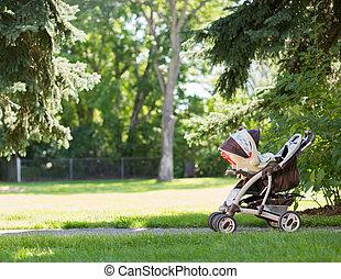 csecsemő, liget, sétáló
