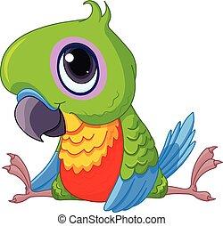 csecsemő, papagáj, csinos