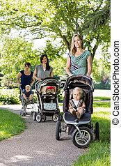csecsemő, rámenős, liget, sétálók, anyák