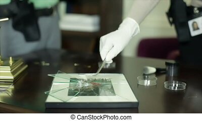 CSI Picking Up Fibers - A woman putting fibers from a broken...