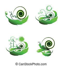 csiga, képben látható, levél növényen