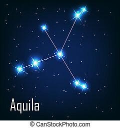 """csillag, sky., éjszaka, ábra, vektor, """"aquila"""", csillagkép"""