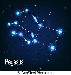"""csillag, sky., """"pegasus"""", ábra, vektor, éjszaka, csillagkép"""