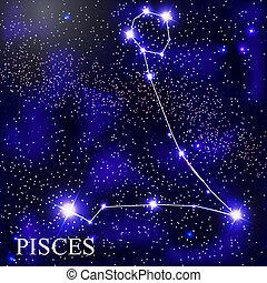 csillaggal díszít, háttér, halak csillagképe, gyönyörű, kozmikus, ég, állatöv, aláír, fényes, ábra