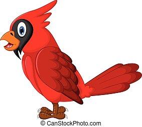 csinos, piros, papagáj, karikatúra