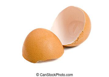 csirke, héj, tojás