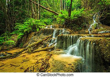 csodálatos, vízesés, alatt, thaiföld, pugang, vízesés, chiangrai
