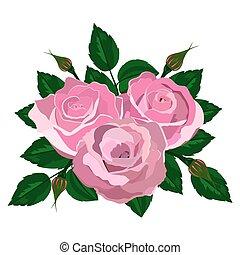 csokor, rózsaszín rózsa