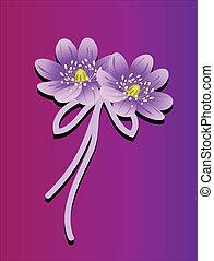 csokor virág