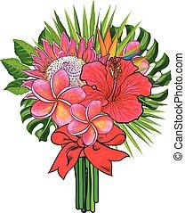 csokor, zöld, elszigetelt, tropikus, háttér., zöld piros, white virág, szalag