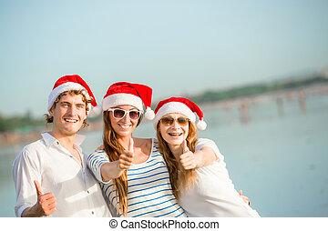 csoport,  christmass, emberek, kalapok, fiatal, tengerpart, boldog