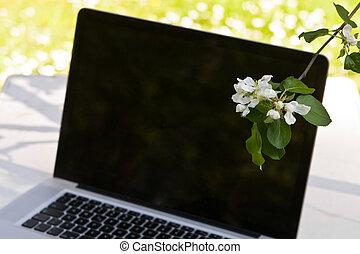cuaderno, con, manzana, flor