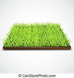 cuadrado, de, hierba verde, campo