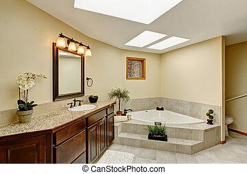 cuarto de baño, moderno, cima, mostrador, gabinete, granito, vanidad