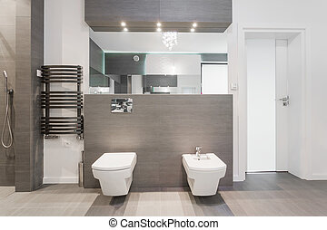 cuarto de baño, moderno, costoso