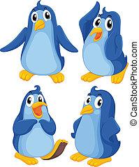 cuatro, azul, pingüinos