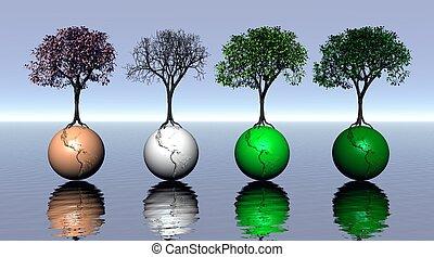 cuatro, coloreado, árboles, y, tierra, para, cuatro estaciones