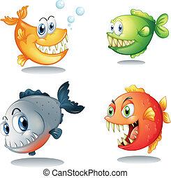 cuatro, diferente, clases, grande, colmillos, peces