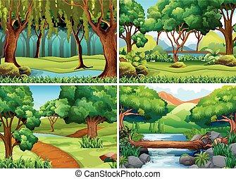 cuatro, escenas, de, bosque, y, río