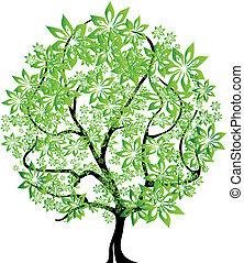 cuatro estaciones, vector, -, árbol