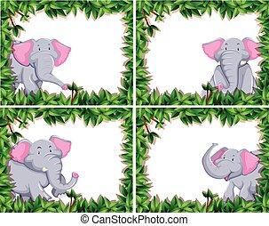 cuatro, lindo, conjunto, elefante