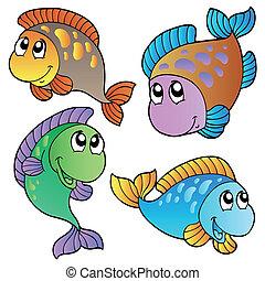 cuatro, peces, caricatura
