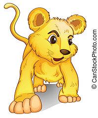 cub on white