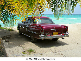 Beach scene with classic car from the sixties on the shores of Varadero beach, Cuba with palm tree in background