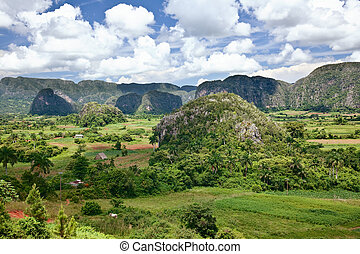Cuba lanscape - The valley of Vinales in Cuba. This is an...