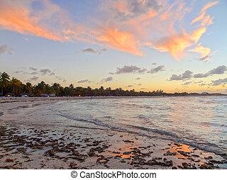 cubaine, soir, plage, temps