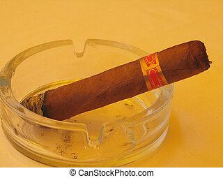 cuban cigar close-up