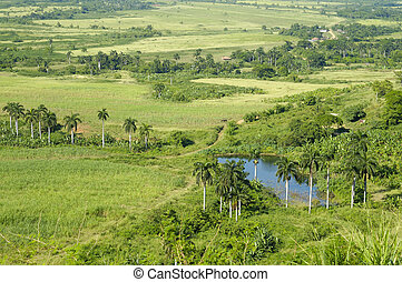 Cuban countryside landscape - A view of rural tropical...