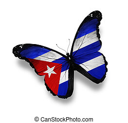 Cuban flag butterfly, isolated on white