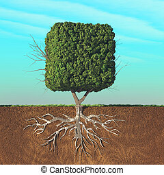 Cubical tree divided