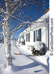 cubierto, nieve, hogar