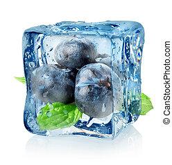 cubo, arándano, hielo