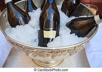 cubo, frío, botellas, hielo, vino
