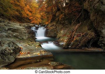 cubo, vízesés, alatt, irati, erdő, alatt, ősz