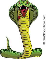 cubra - Cobra vector