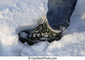 cubrir, bota, profundo, snow., impresión, elaboración