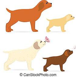 cuccioli, disegno, carino, collezione, tuo