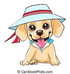 cucciolo, cane, cane riporto labrador