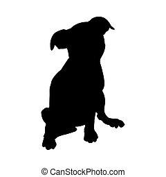 cucciolo, silhouette, cane
