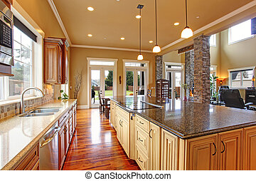cucina, interno, in, lusso, casa