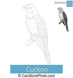 Cuckoo bird learn to draw vector - Cuckoo learn birds...