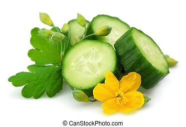 Cucumber and celandine close up